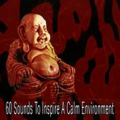 60 Sounds to Inspire a Calm Environment by Relaxing Mindfulness Meditation Relaxation Maestro