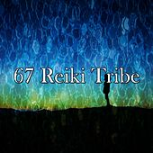 67 Reiki Tribe de White Noise Therapy (1)