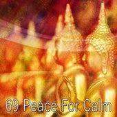 69 Peace for Calm de White Noise Research (1)