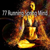 77 Running Spring Mind by Music For Reading