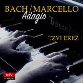 Concerto in D Minor (After Alessandro Marcello), BWV 974: II. Adagio de Tzvi Erez