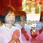 54 Peace of Spirit de Meditación Música Ambiente