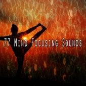 77 Mind Focusing Sounds von Entspannungsmusik