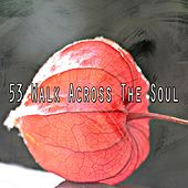 53 Walk Across the Soul von Massage Therapy Music