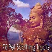 76 Pet Soothing Tracks de Meditación Música Ambiente