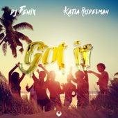 Got it (feat. Katia Rudelman) von Dj Fenix