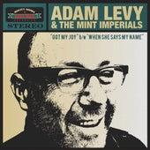 Got My Joy de Adam Levy