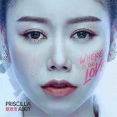 Where Is The Love de Priscilla Abby