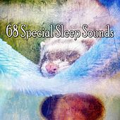 68 Special Sleep Sounds di Relaxing Music Therapy
