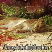 27 Encourage Your Rest Tonight Through Storms de Thunderstorm Sleep