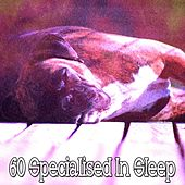 60 Specialised in Sleep by Ocean Sounds Collection (1)