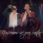 Nascemos para Cantar (Ao Vivo) de Sander e Fellipe