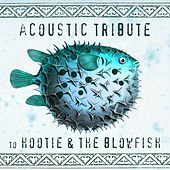 Acoustic Tribute to Hootie & The Blowfish (Instrumental) de Guitar Tribute Players