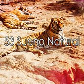 53 Sueno Natural by Trouble Sleeping Music Universe
