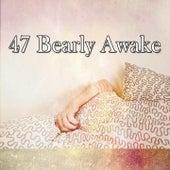 47 Bearly Awake de Sleepicious