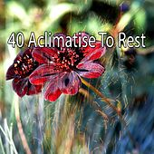 40 Aclimatise to Rest von Best Relaxing SPA Music