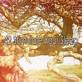 42 Stimulate Your Sleep by Baby Sweet Dream (1)