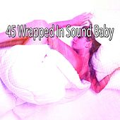 45 Wrapped in Sound Baby by Baby Sleep Sleep