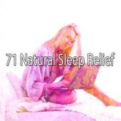71 Natural Sleep Relief de White Noise Babies