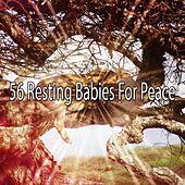 56 Resting Babies for Peace von Spa Music Paradise