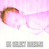 55 Select Dreams de White Noise Babies