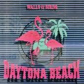 Daytona Beach by Walls