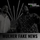 Mulher Fake News de Reinaldo