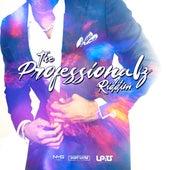 Professionalz Riddim de Various Artists