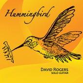 Hummingbird by David Rogers