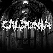 Feast or Famine by Caldonia