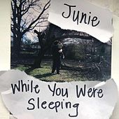 While You Were Sleeping by Junie Morrison