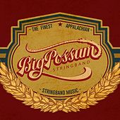 Big Possum Stringband de Big Possum Stringband