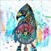 Let It Go von BIRDS OF PREY