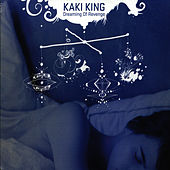 Dreaming Of Revenge by Kaki King