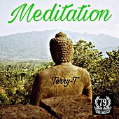 Meditation by Terry T