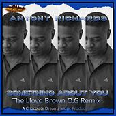 Something About You (The Lloyd Brown O.G. Remix) by Antony Richards