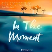 In the Moment by Mr. Octopus