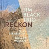 Reckon by Jim Black