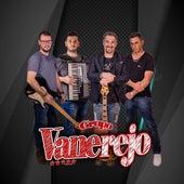 Traição Premeditada (Ao Vivo) by Grupo Vanerejo Oficial