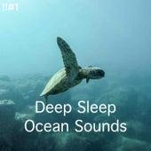 !!#1 Deep Sleep Ocean Sounds by Ocean Sounds (1)
