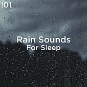 !01 Rain Sounds For Sleep by Rain Sounds