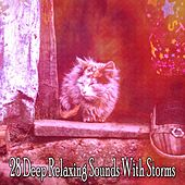 28 Deep Relaxing Sounds with Storms by Rain Sounds Nature Collection
