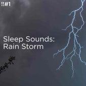 !!#1 Sleep Sounds: Rain Storm de Thunderstorm Sound Bank