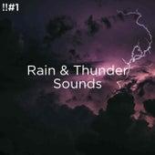 !!#1 Rain & Thunder Sounds de Thunderstorm Sound Bank