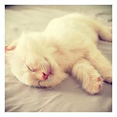 Lullabies for Deep Sleep and Relaxation, Vol. 3 by Baby Sleep Sleep