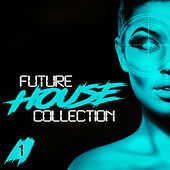 Future House Collection, Vol. 1 de Various Artists