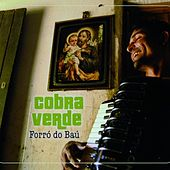 Forro do bau von Various Artists