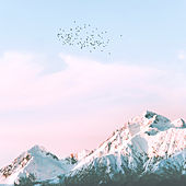 Música Relajante Con El Canto De Los Pájaros (Piano) de Música De Relajación Para Dormir Profundamente