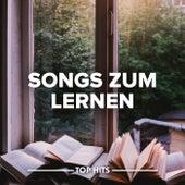 Songs zum Lernen von Various Artists