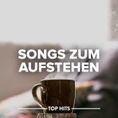 Songs zum Aufstehen von Various Artists